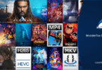 WonderFox DVD Video Converter Review - To Simplify Your Life